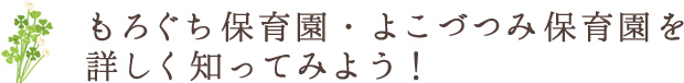 もろぐち保育園・よこづつみ保育園を詳しく知ってみよう!
